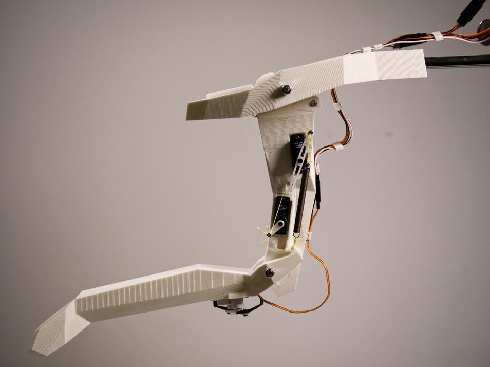Bioinspirierte-Robotik-Von-Libellen-lernen